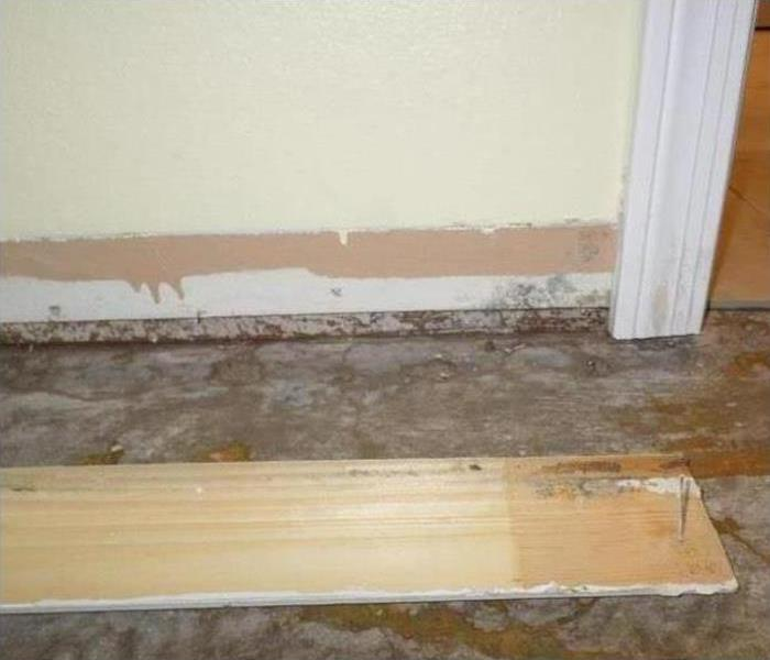 Mold Remediation In Casa Grande Before