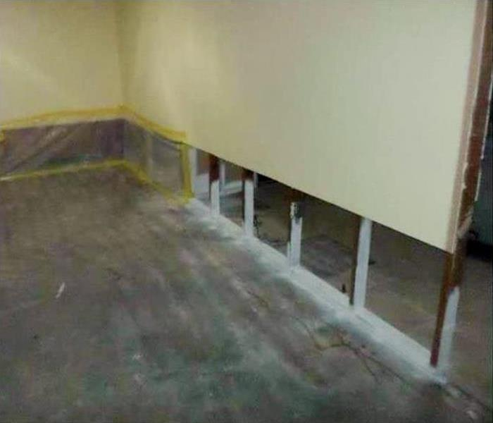 Mold Remediation In Casa Grande After