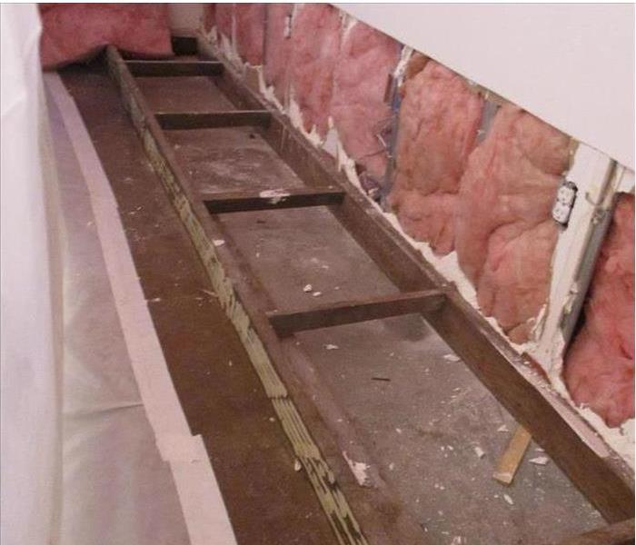 Mold Remediation--Maricopa