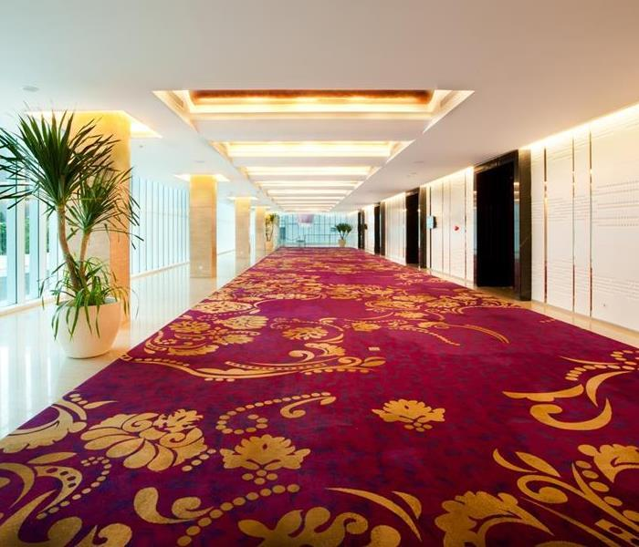 Cleaning Commercial Carpet Cleaning
