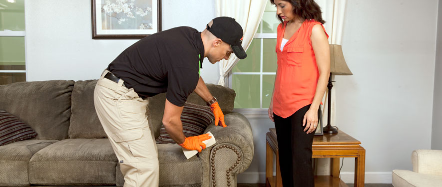 Casa Grande, AZ carpet upholstery cleaning